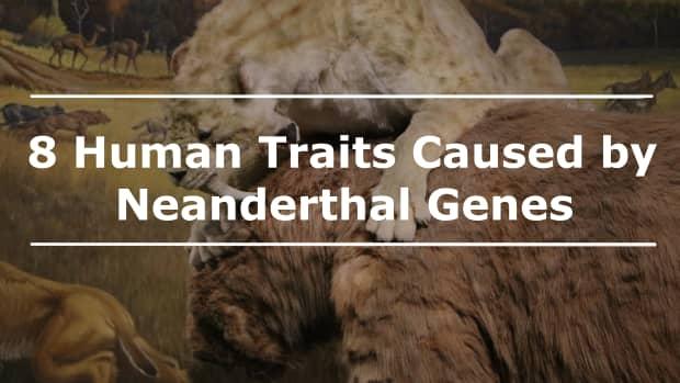 8-neanderthal-traits-in-modern-humans