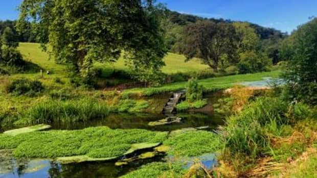 search-for-the-elusive-salmon-vale-trail-6-walking-vale-of-glamorgan