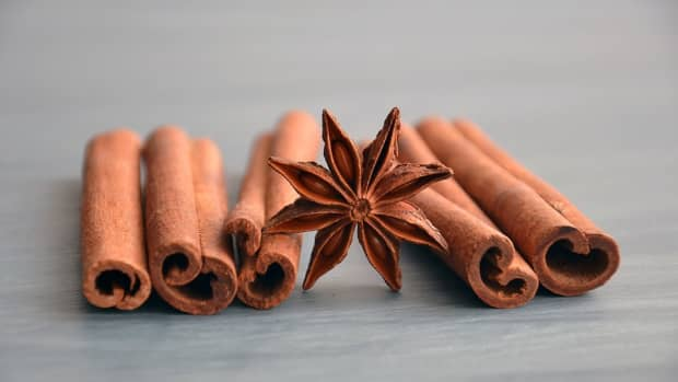 how-to-grow-cinnamon-like-an-expert