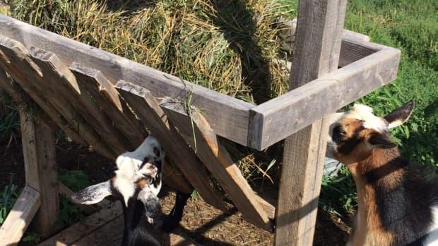 baling-hay-with-a-utv-or-atv