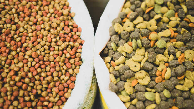 what-are-the-best-veterinarian-recommended-dog-foods