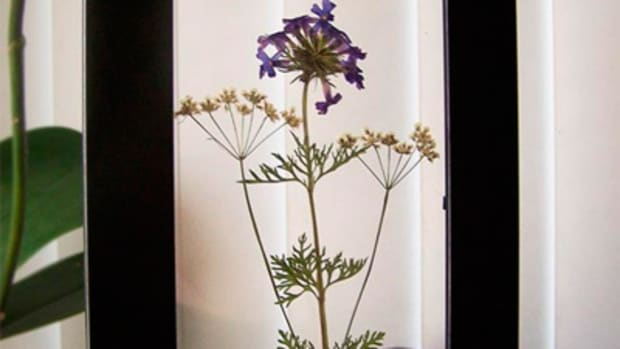 pressing-flowers-for-handmade-gifts