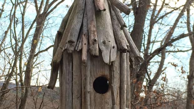 driftwood-art-how-to-make-a-driftwood-birdhouse