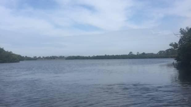 kayaking-in-venice-florida
