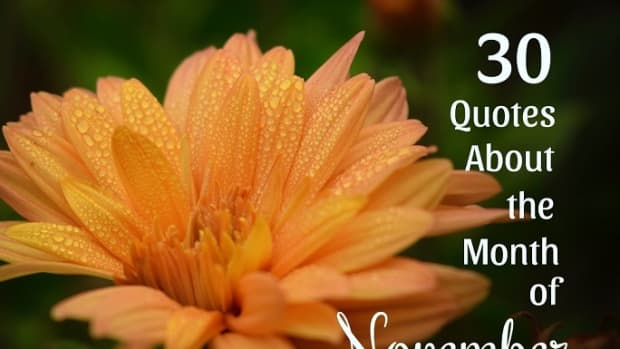 quotes-about-november-the-month-of-thanksgiving