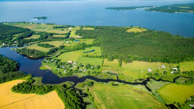 estuary-one-of-the-most-productive-ecosystems-in-the-world