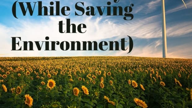 10-tips-on-how-you-can-save-money-while-protecting-the-environment