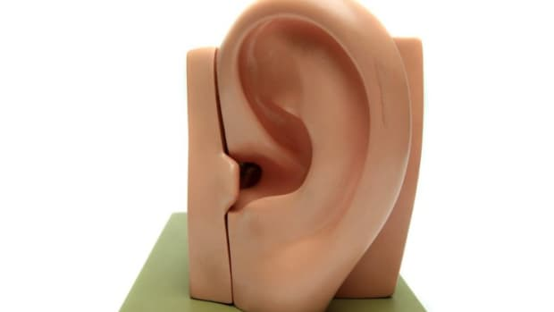 how-to-be-a-good-listener-characteristics-and-qualities-of-good-listeners