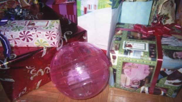 christmas-gifts-for-your-hamster