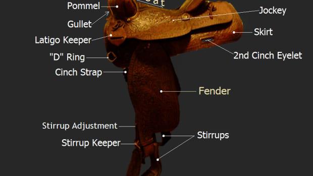 proper-western-saddle-fit