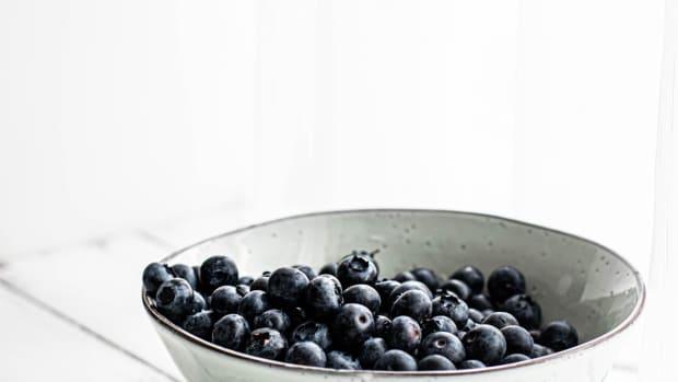 blueberries-nova-scotia