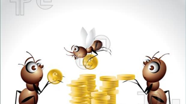 lessons-from-nature-5-simple-money-saving-ideas-from-ants