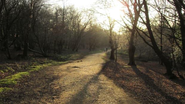 heritage-54-fresh-trails-on-worn-tracks