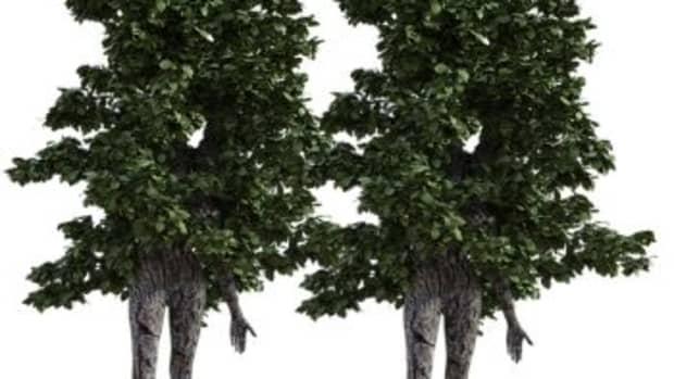 the-symphony-of-life-is-like-a-tree