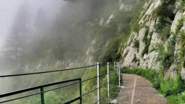adventurous-botany-field-trip-to-khanaspur-ayubia