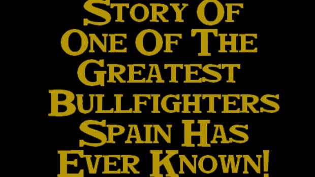 the-bullfighter