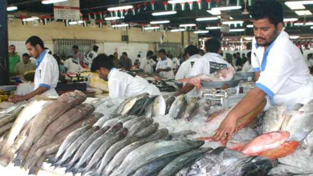 dubai-deira-fish-market