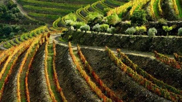 portuguese-wine-regions