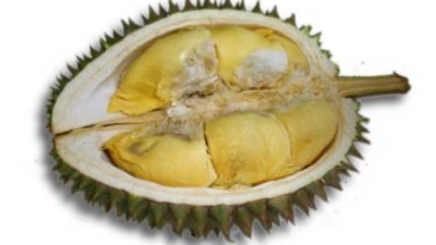 durian-fruit