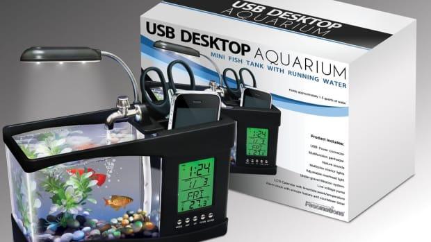 unique-fish-tanks