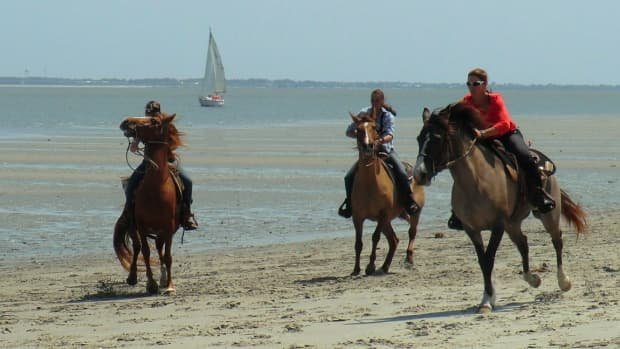 horse-racing-on-daufuskie-island-on-melrose-at-the-beach-resort