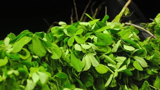 potential-health-benefits-of-fenugreek-or-hilba
