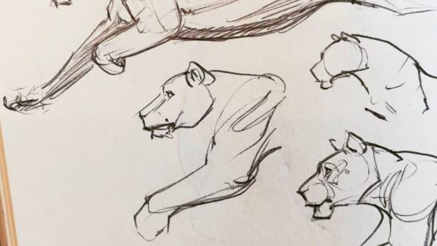 draw-everyday