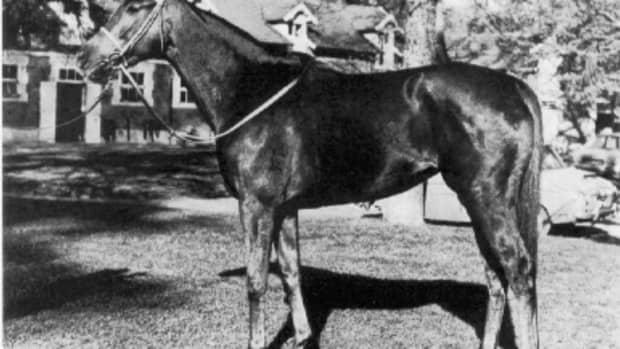 famous-racehorses-part-two