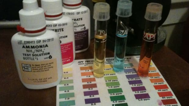 tips-on-reading-aquarium-water-tests