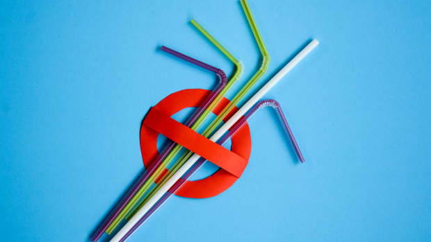 no-more-plastic-straws-what-are-the-alternatives