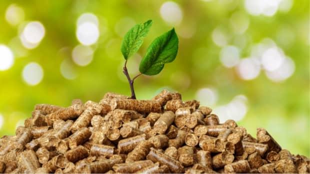 advantages-of-biomass
