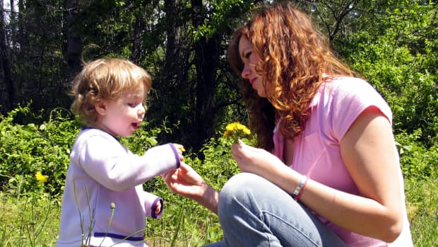 reasons-for-sole-custody-agreements-and-visitation-schedules