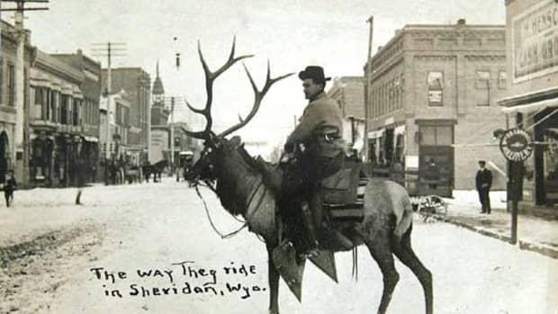 riding-deer