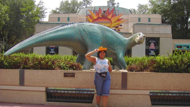 Whilst taking a picture at Disney's Animal Kingdom, I model one of the ideal examples of good theme park clothing: sleevelss top, brimmed hat, water shoes and shorts.