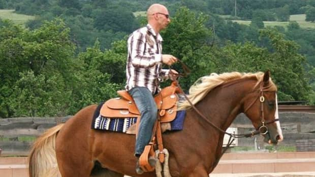 western-saddles-how-to-ensure-a-good-fit