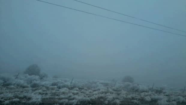 tips-for-driving-in-fog