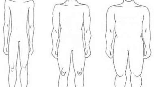 drawing-the-human-figure-shapes-sizes-body-types