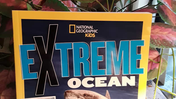 our-oceans-are-a-source-for-all-things-awesome-in-national-geographic-kids-extreme-ocean