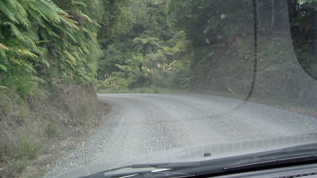 exploring-the-back-roads-of-new-zealands-north-island-south-to-taupo-lake-taupo-to-west-coast-via-logging-route