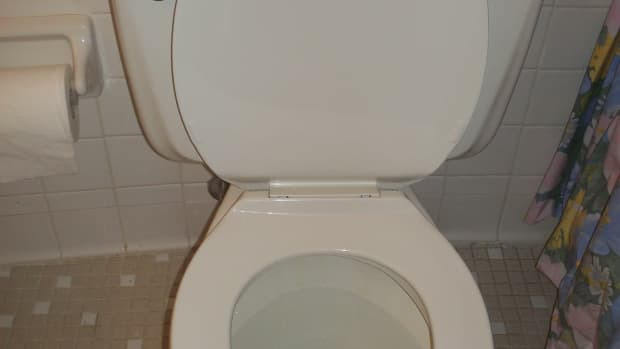 how-to-flush-the-toilet