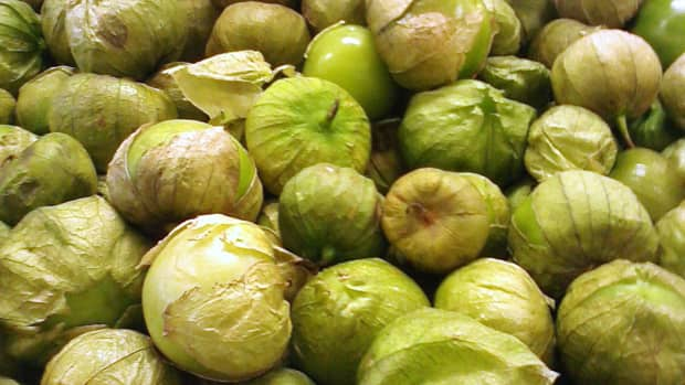 similarities-and-differences-between-tomatillos-and-green-tomatoes