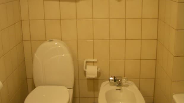toilet_bidet_bedays_badays