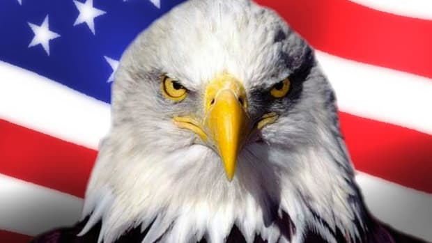 the-eagle-things-you-might-not-know-about-the-symbol-of-america