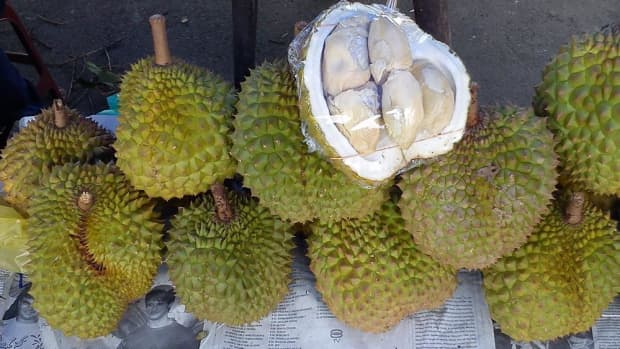 fresh-durian-for-months