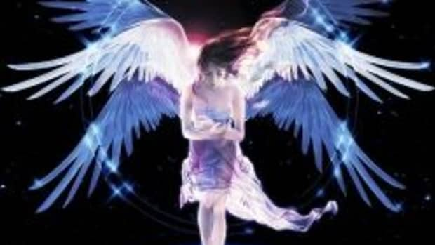 following-the-angel-dust-2011
