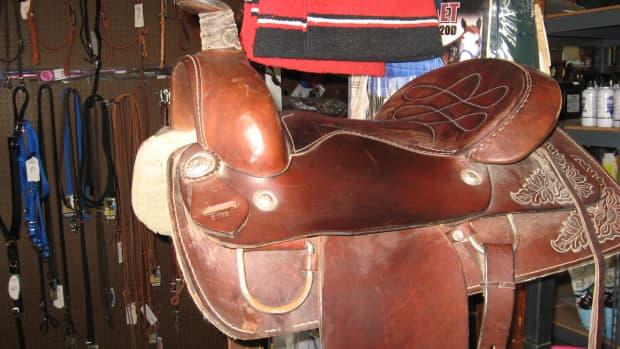 horse-tack-kids-saddles-and-youth-saddles