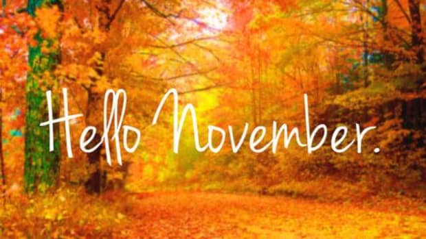november-interesting-things-about-the-month-including-what-to-buy-and-what-not-to-buy