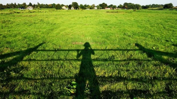 what-exactly-is-the-mystery-behind-the-shadow