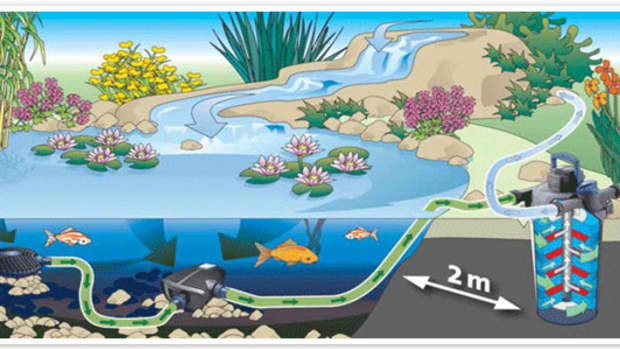 what-you-need-to-know-about-pond-filtration-systems