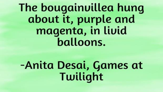 role-of-setting-in-anita-desais-games-at-twilight